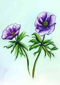 hawaii Art Prints, Anemone Flower painting by hawaii artist Donald K. Hall #197