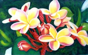 Plumeria  flower, hawaii tropical flowes  art prints, painting by hawaii artist Donald K. Hall #205