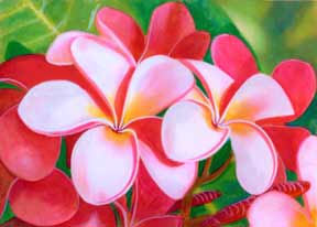 hawaii Art Prints, Hibiscus Flower painting by hawaii artist Donald K. Hall #212