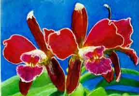 hawaii Art prints, Orchid flower painting by hawaii artist Donald K. Hall #215