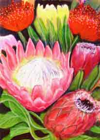 Protea, hawaii tropical flowes  art prints, painting by hawaii artist Donald K. Hall #240