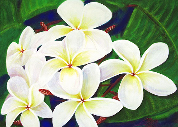 Plumeria  flower, Hawaii tropical flowes  art prints, painting by Hawaii artist Donald K. Hall #289