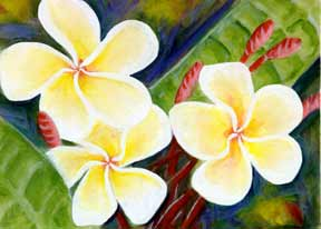 Plumeria  flower, hawaii tropical flowes  art prints, painting by hawaii artist Donald K. Hall #298