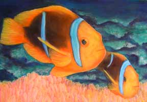 "hawaii art prints, Marine Life hawaiian art (Clown Fish ""Nimo"") painting by hawaii artist Donald K. Hall #310"