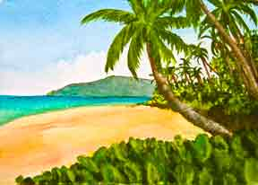 Hawaii Beach  art, Hawaii Beaches Art Prints, Kaaole Beach Maui Hawaii  painting by Hawaii Beach artist Donald K. Hall #349