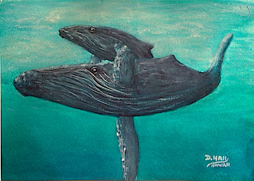 Hawaii Art, Humpback Whales water color painting and art prints for sale by Hawaii artsit Donald K Hall #455