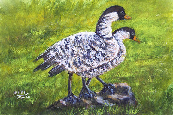 Nene Birds, Original Water Color  Art Painting and prints for sale No:491